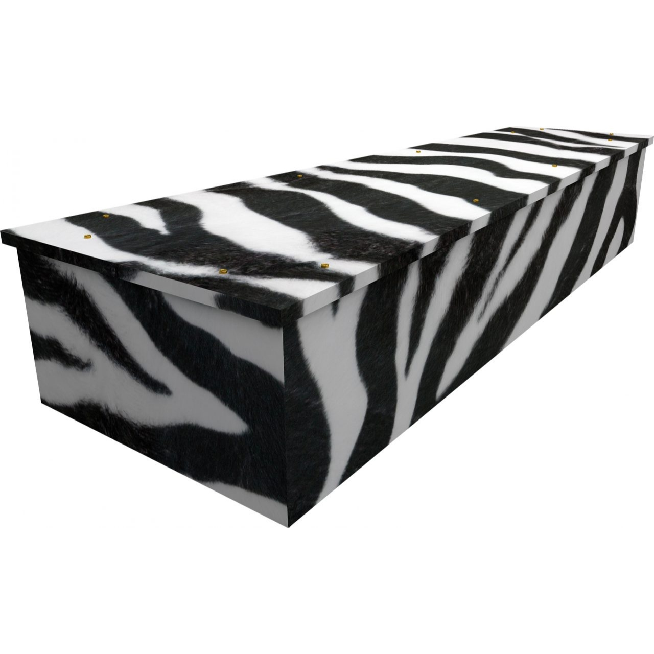Zebra Cardboard Coffin