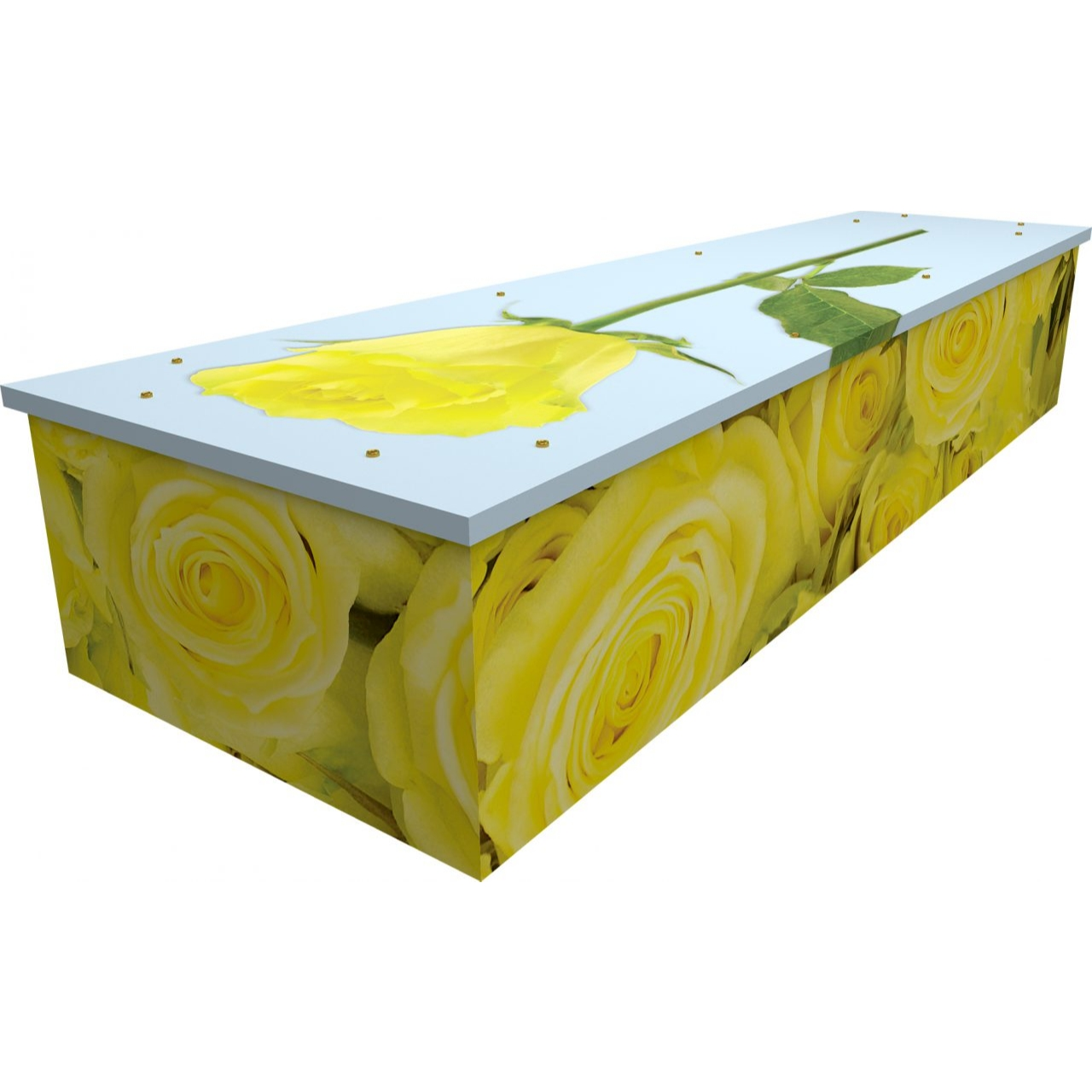 Yellow Rose Cardboard Coffin