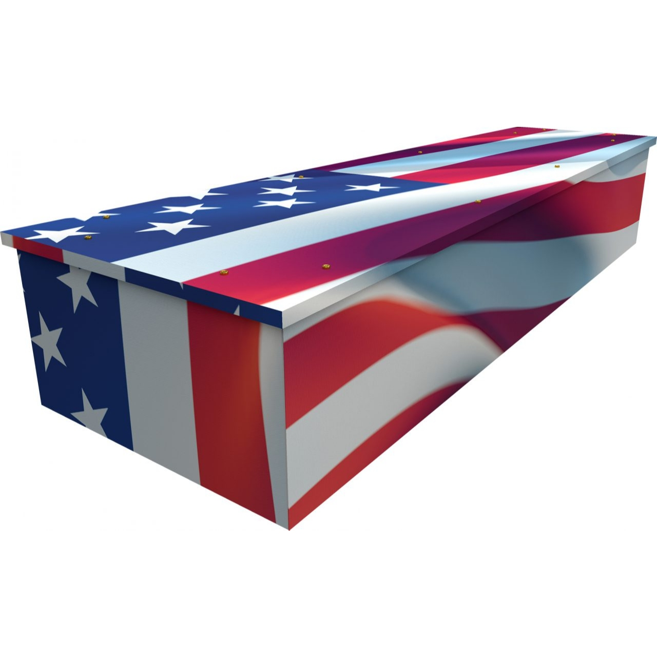 USA Cardboard Coffin
