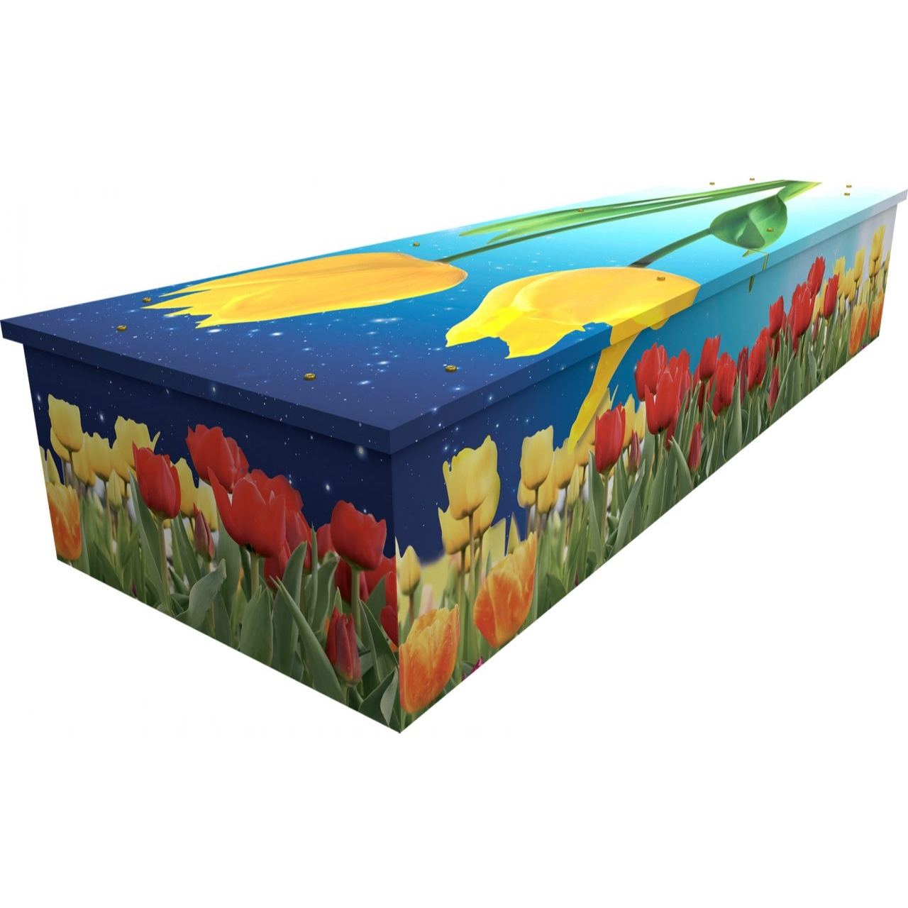 Tulips Cardboard Coffin