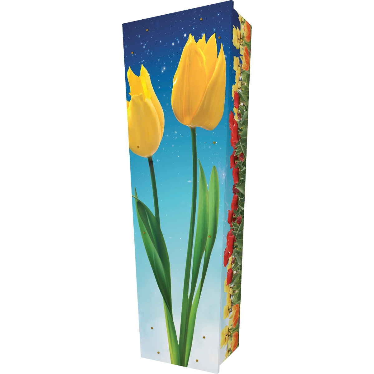 Tulips Coffin