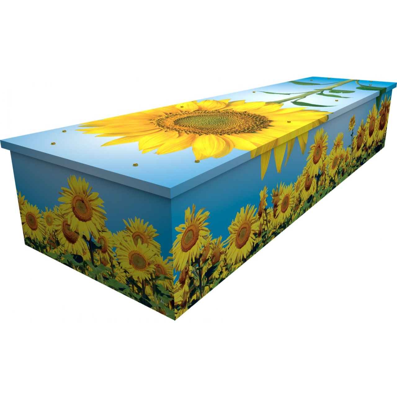 Sunflower Cardboard Coffin