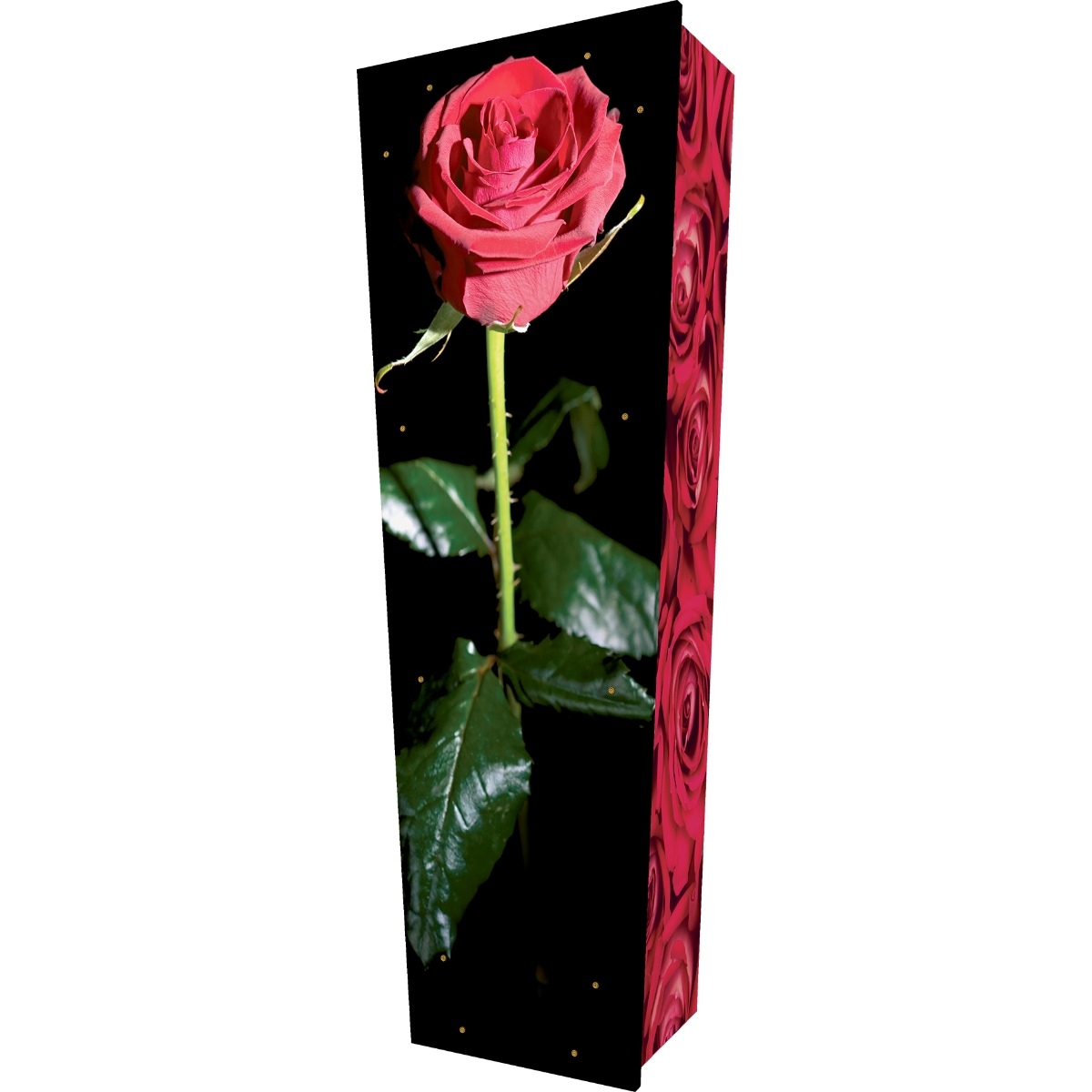 Red Rose Coffin