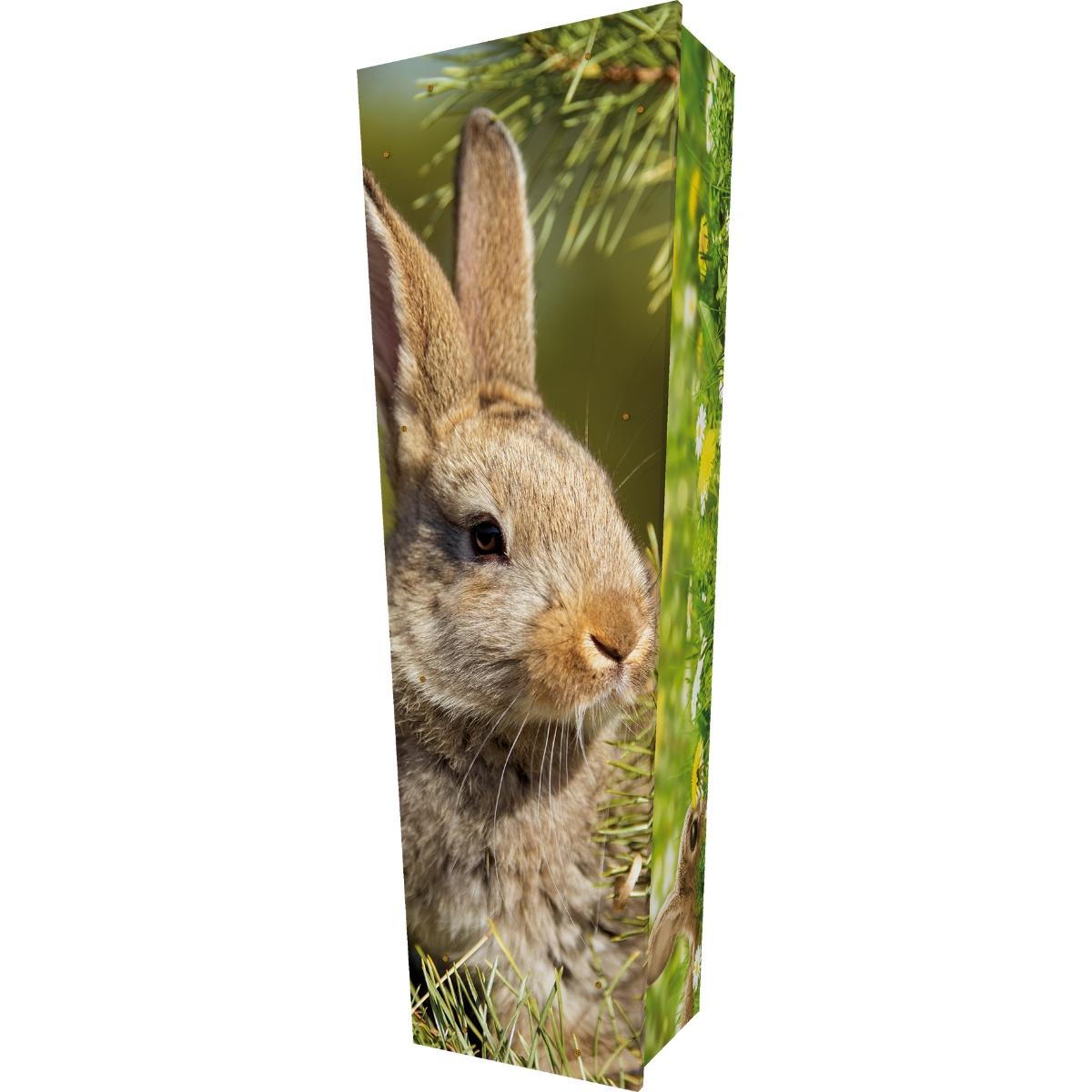 Rabbit Coffin