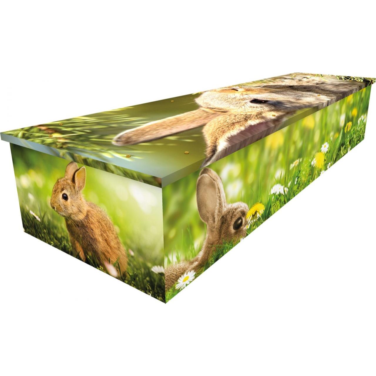 Rabbit Cardboard Coffin