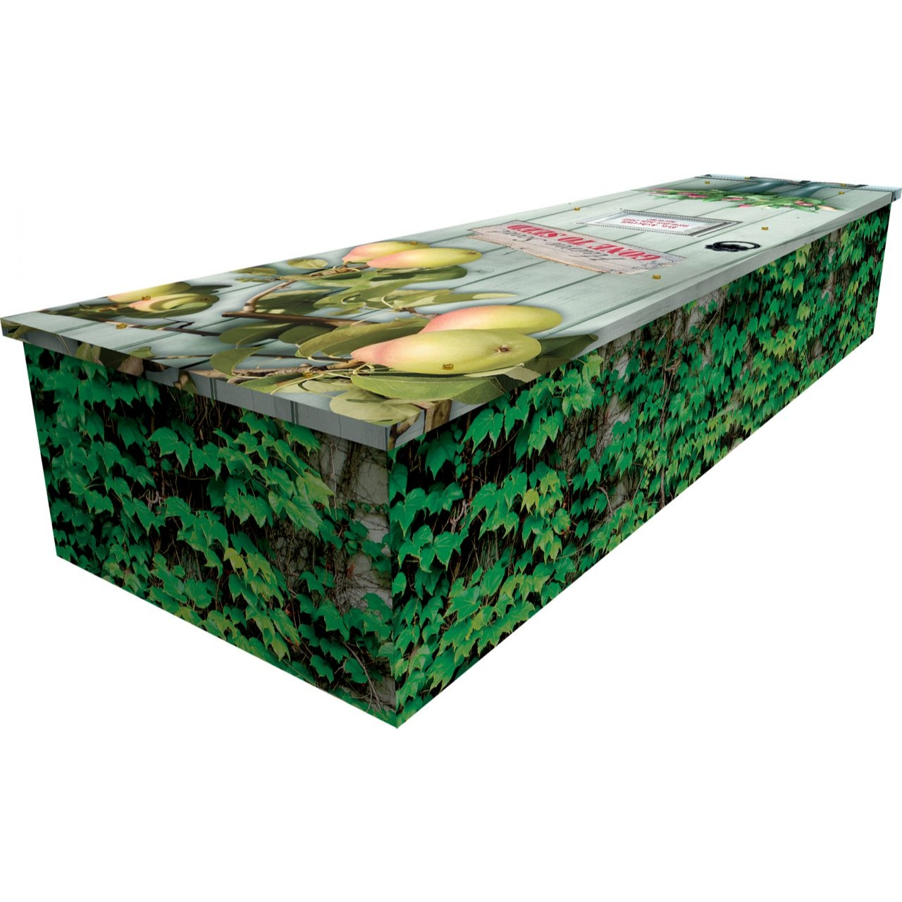Pear Tree Cardboard Coffin