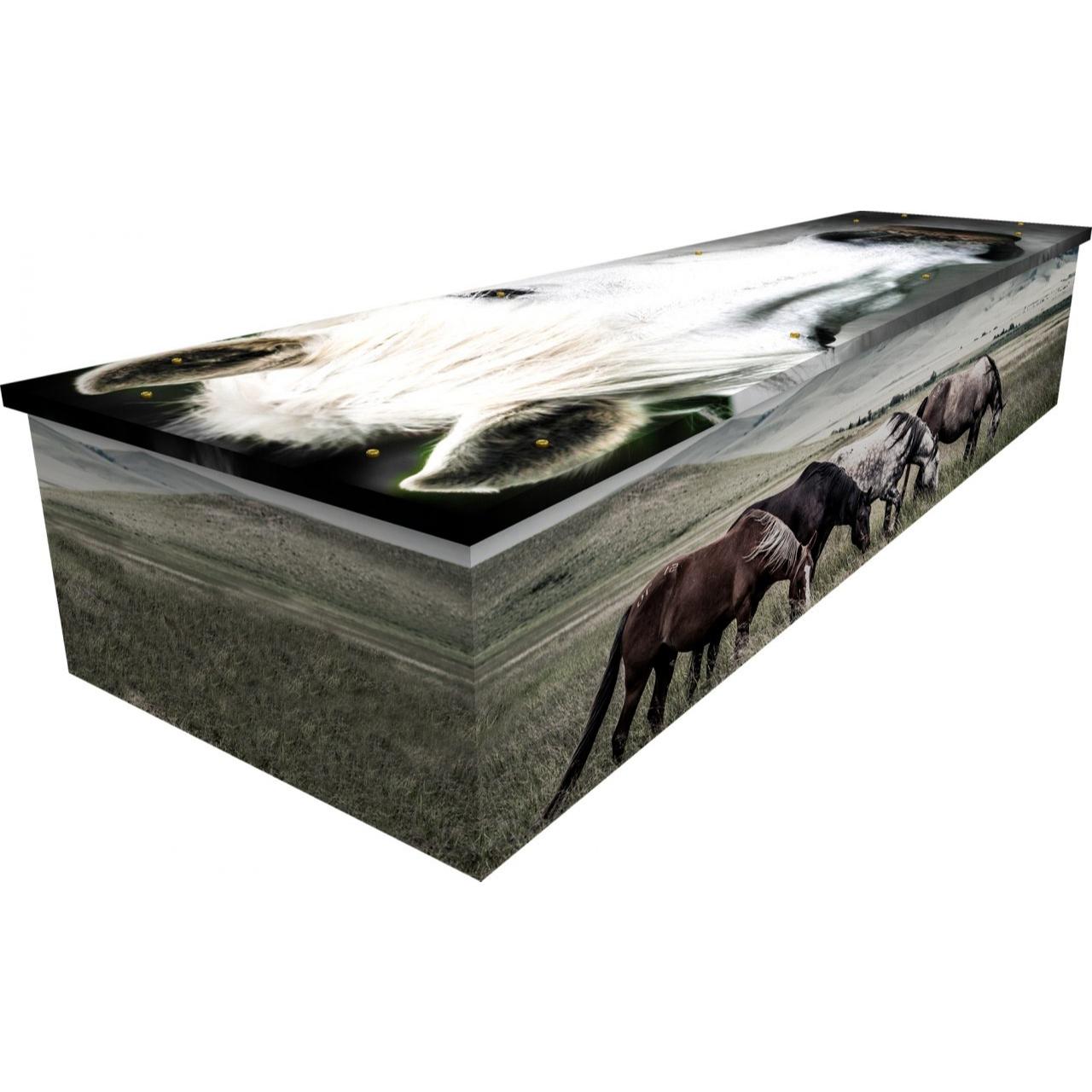 Horse Cardboard Coffin