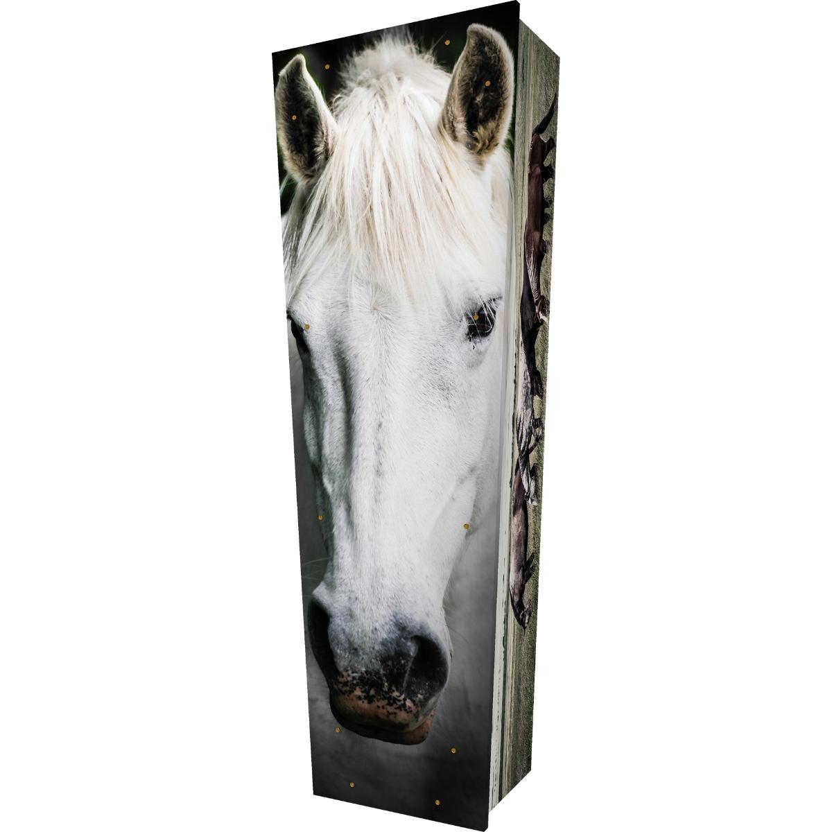 Horse Coffin