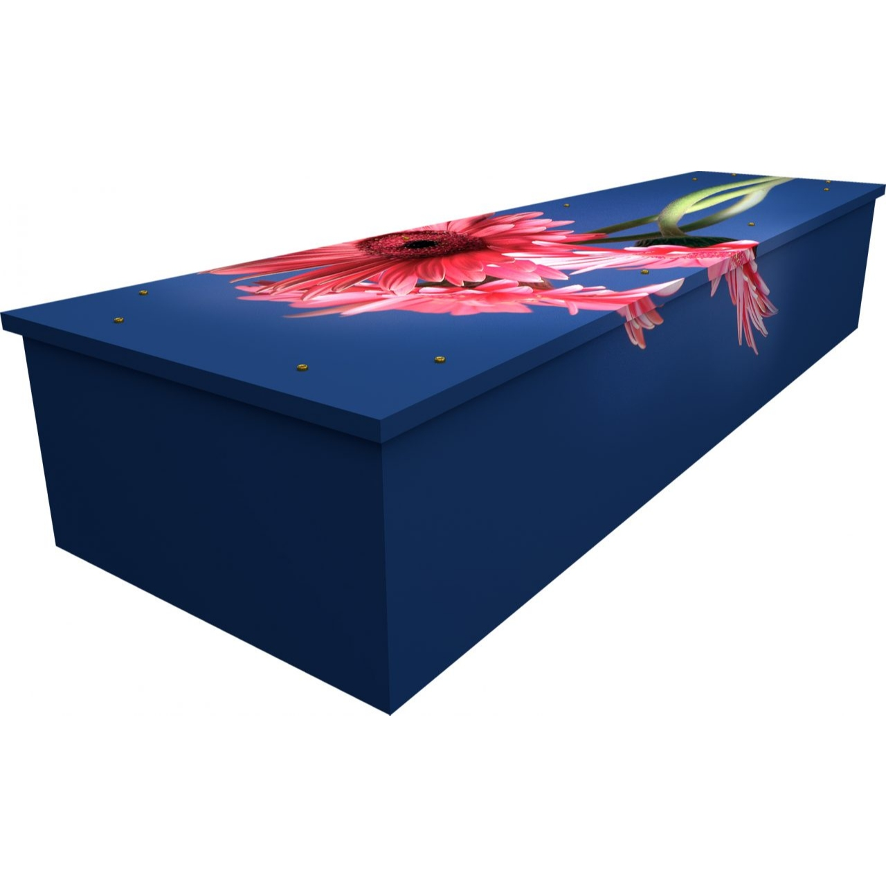 Gerbera Cardboard Coffin
