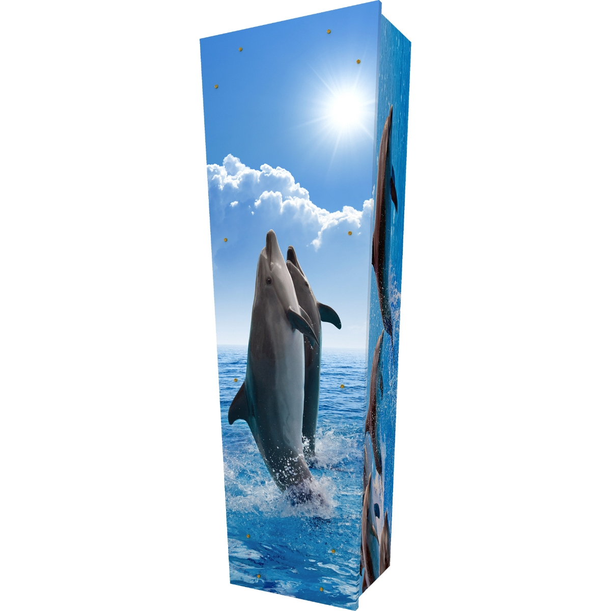 Dolphins Coffin