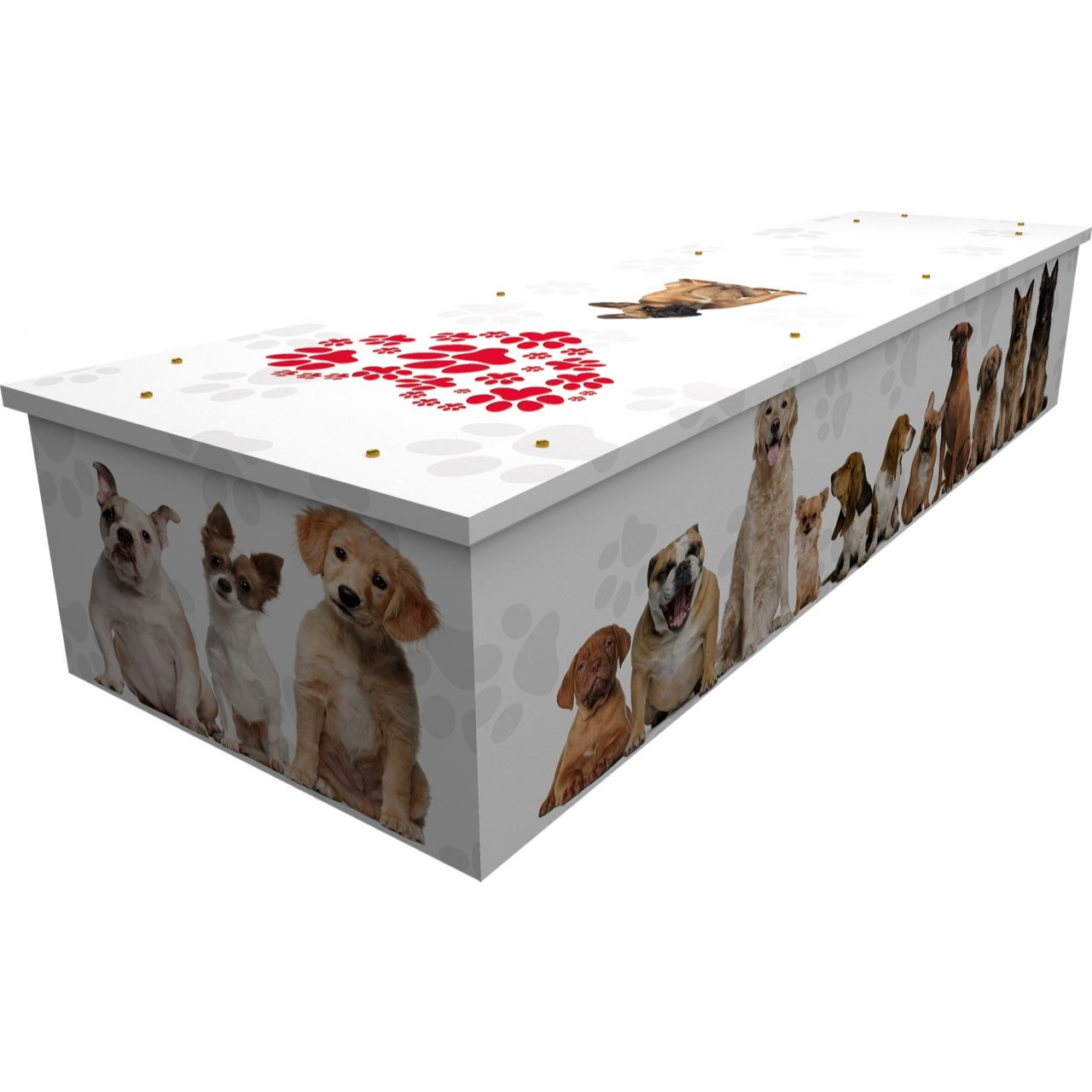 Dogs Cardboard Coffin