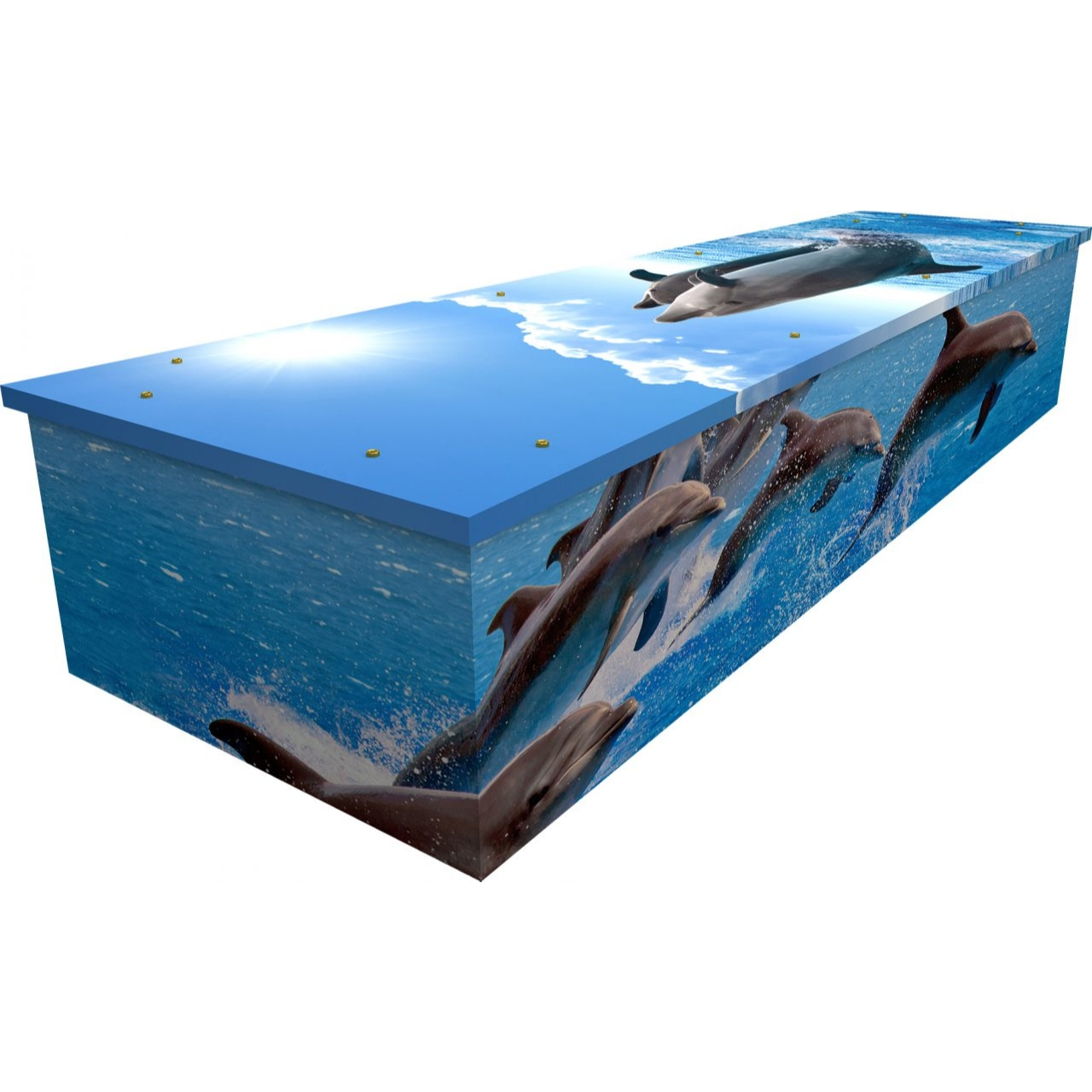 Dolphins Cardboard Coffin