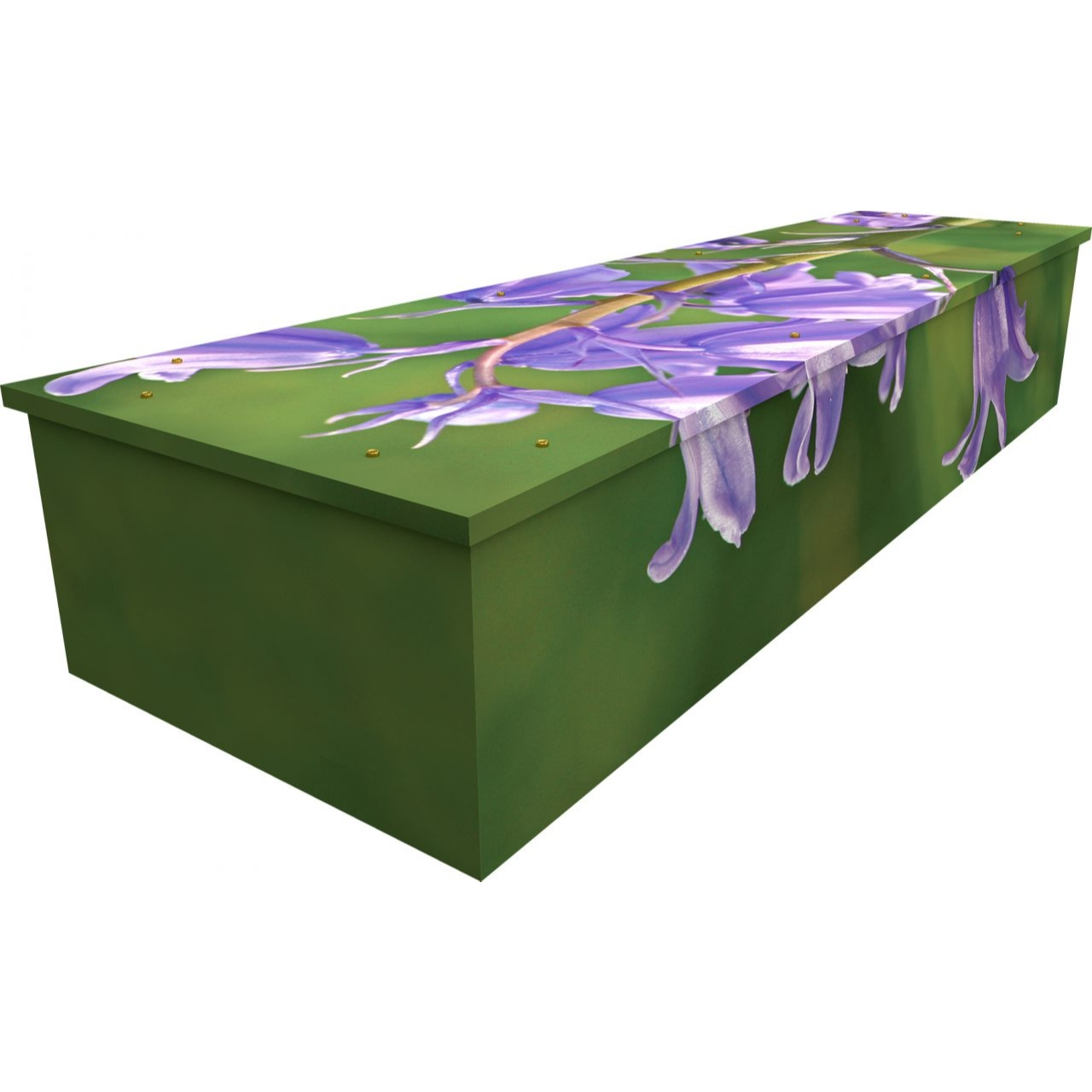 Bluebell Cardboard Coffin