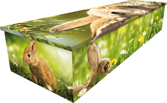 Rabbit Coffin - Side