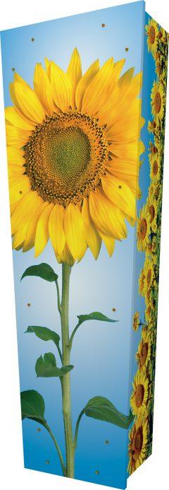 Sunflower Coffin - Standing