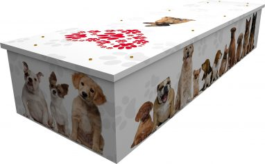 Picture Cardboard Pet Coffin