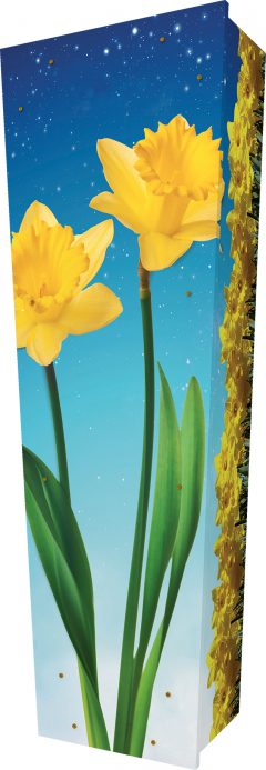 Daffodils Coffin - Standing