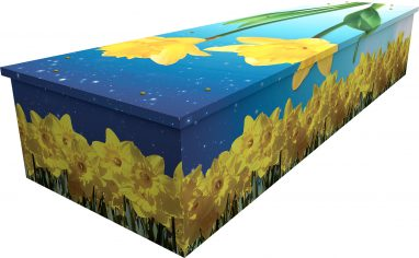 Daffodils cardboard picture coffin