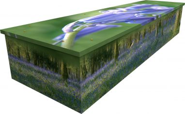 Bluebell Wood Cardboard Picture Coffin