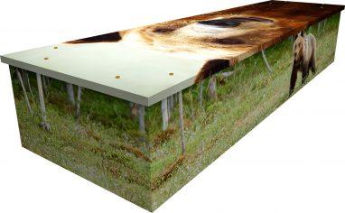 cardboard printed bear coffin.