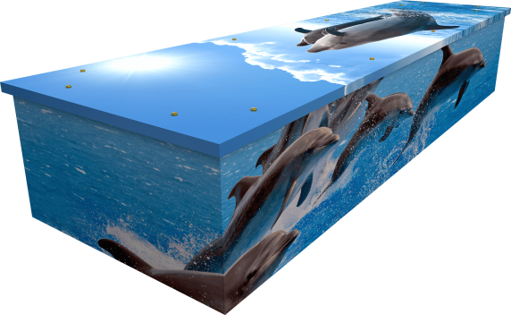 Dolphins Coffin - Side